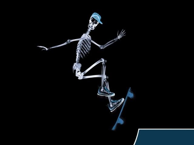 X-Ray xr24.jpg
